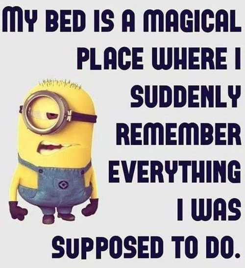 Funny Quotes 225