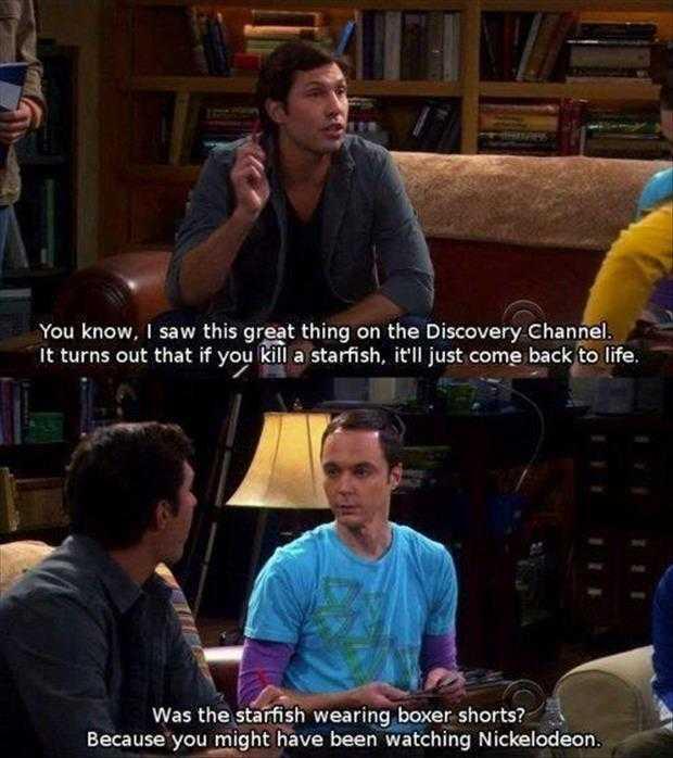 funny big bang theory 83k