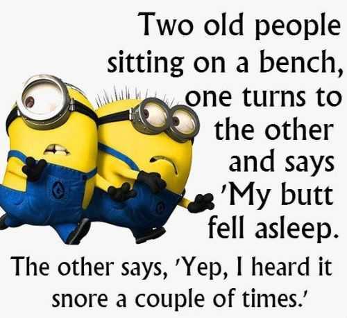 Funny Minion Quotes 267