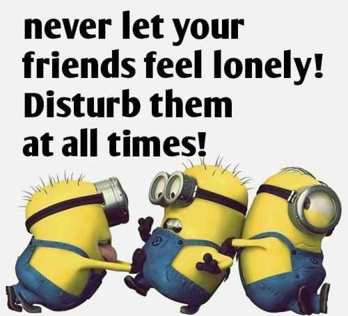 Funny Minion Quotes Of The Day 271