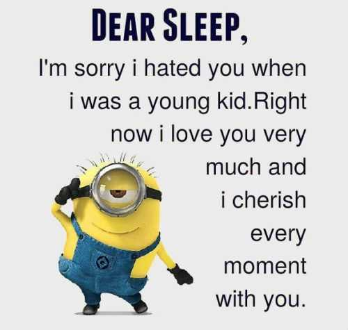 Funny Quotes Of The Day: Great Minion Quotes. QuotesGram