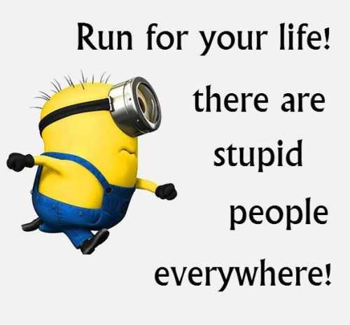 Funny Minion Quotes Of The Day 291