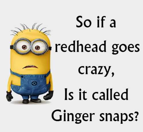 Funny Minion Quotes Of The Day 316