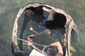 Underwater Bowfishing animal house video featured