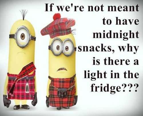 Funny Minion Quotes 369