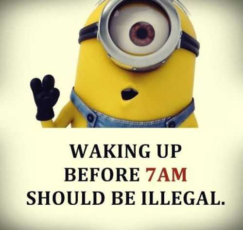 Funny Minions Quotes 419