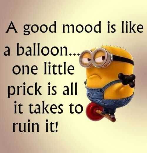 Stupid Minion Quotes: Minion Quotes Stupid People. QuotesGram
