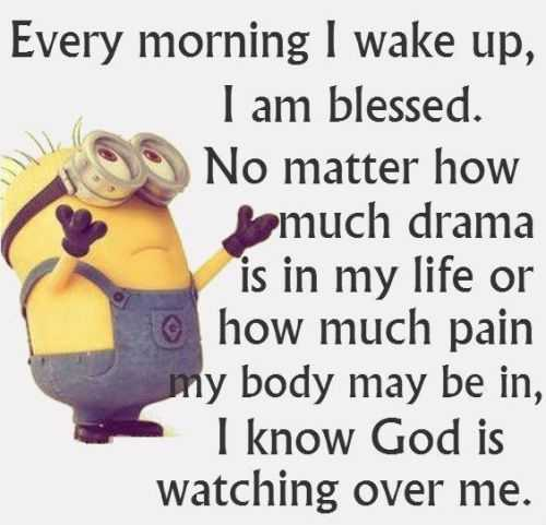 Minions Quotes Of The Day 307
