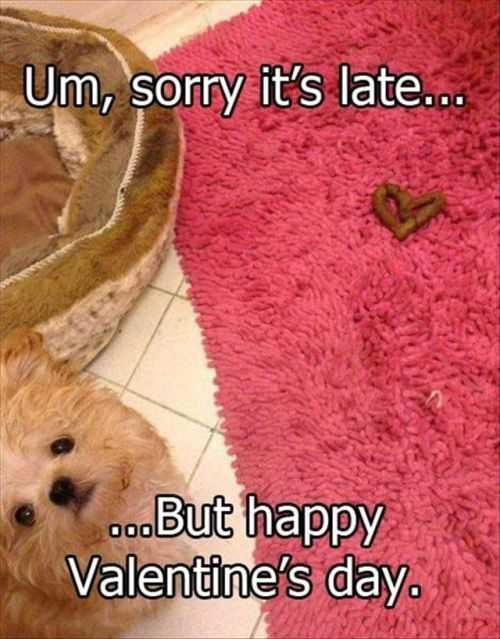 doog poop in the shape of a heart. dog left poop valentine