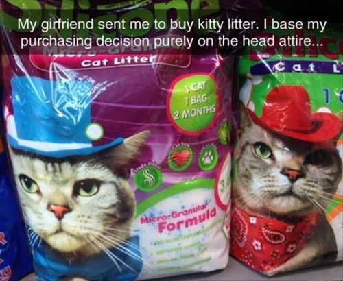 funny kitty litter bags