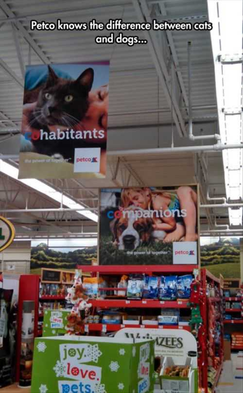 petco knows the diffrence between cats and dogs