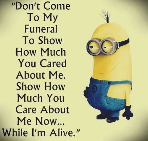 Best new funny Despicable Me minions quotes 016