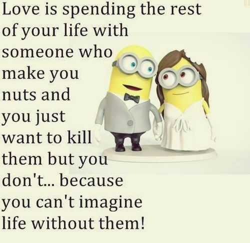 Funny Memes 2015 About Love : Funny minion quotes of the week