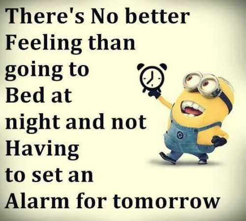 Funniest Minions Quotes On The Internet 395
