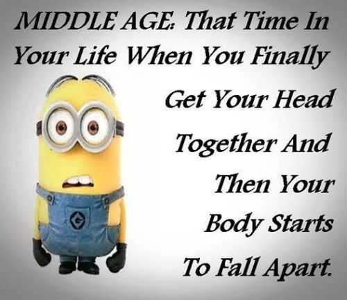 Funniest Minions Quotes On The Internet 416 Funny Minion Quotes Of The Week