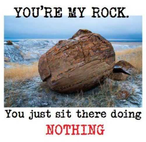 youre my rock funny quote Funniest Pictures Of The Week