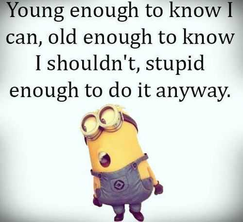Despicable Me funny minion quotes of the day 021