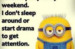 Despicable Me funny minion quotes of the day 047