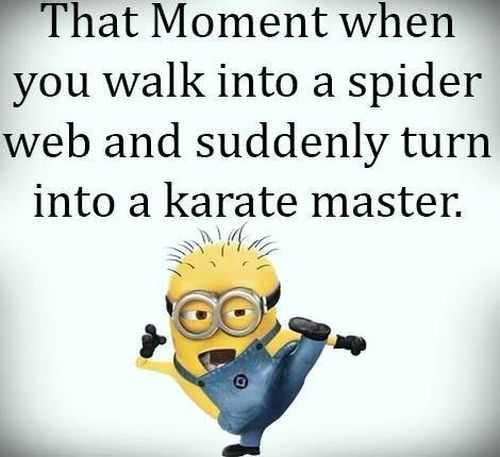 Despicable Me Funny Minion Quotes Of The Day 050 Funniest Minions Quotes Of The Week
