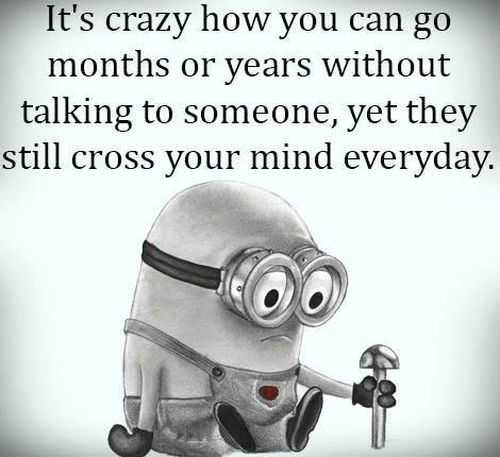 Funny Minions Pictures Of The Week 024