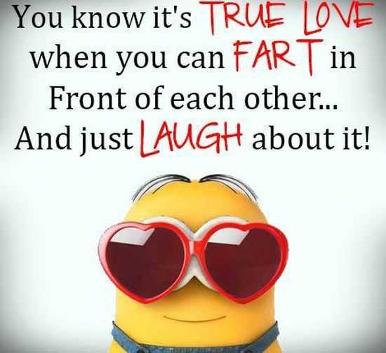 I Love You Quotes By Minions : Minions Pictures For The Week Funny Minion, Minions and Funny Minion ...