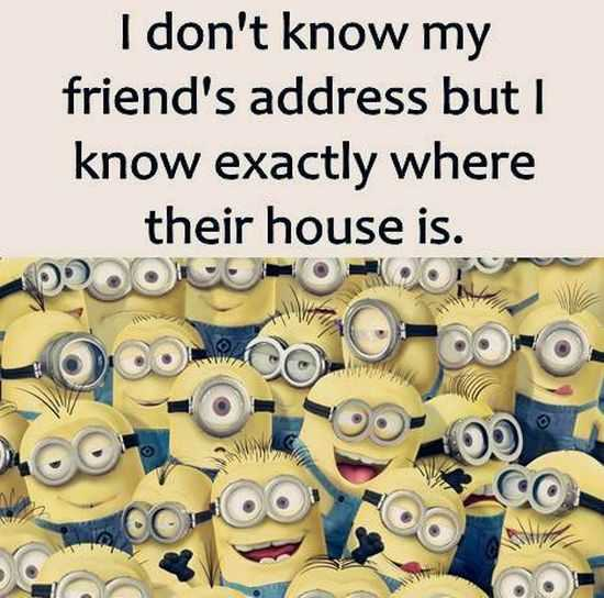New Funny Minions Pictures 022