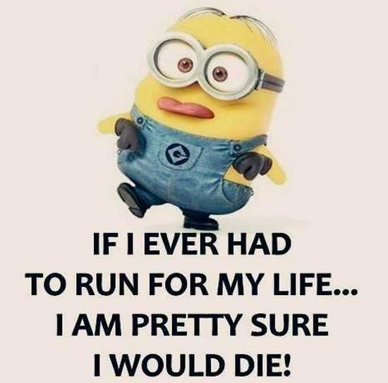 New Funny Minions Pictures 023