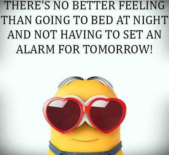 New Funny Minions Pictures 050