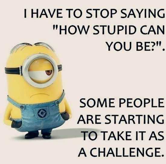 New Funny Minions Pictures 057