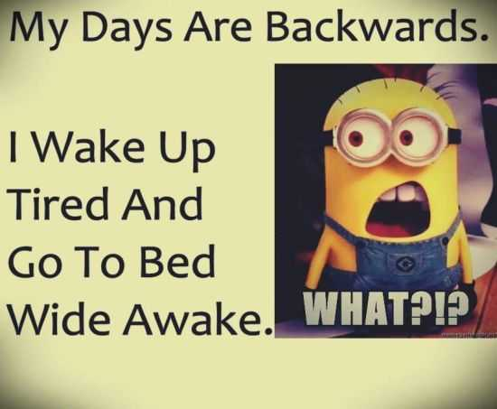 New Funny Minions Pictures 058