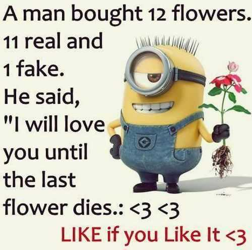 New Funny Minions Quotes 024