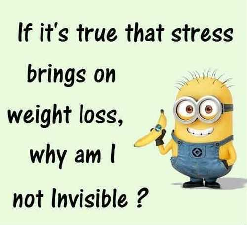 New Funny Minions Quotes 043