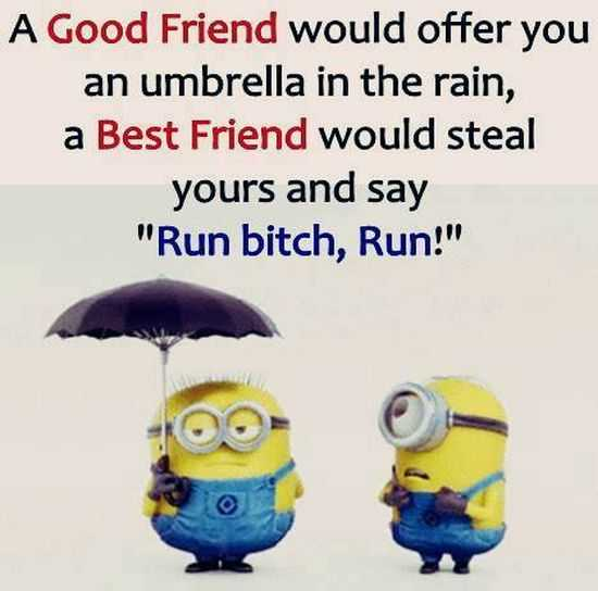 Funny Minions Quotes of The Week 025