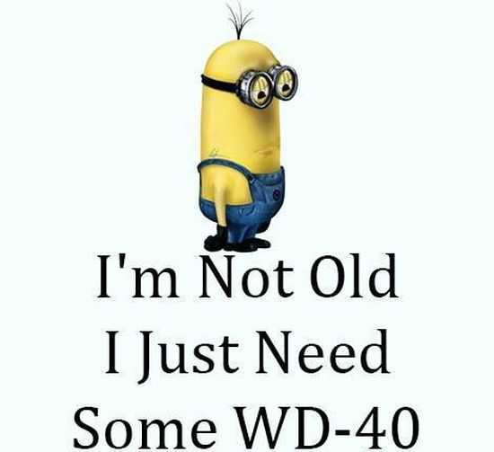 Funny Minions Quotes of The Week 044