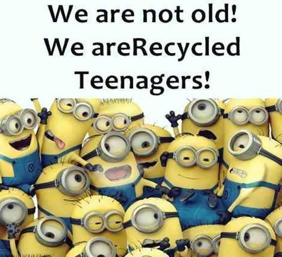 Funny New Minions Pictures 034