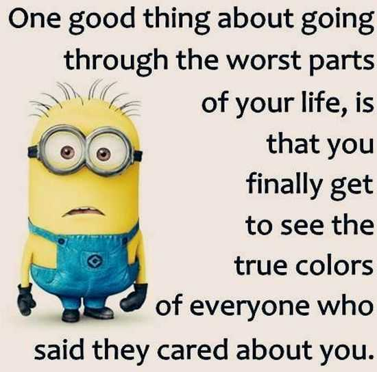 Funny New Minions Pictures 051