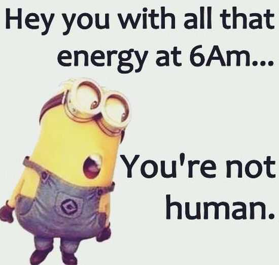 Funny Minions Quotes Of The Week