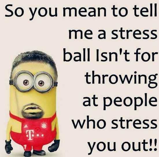 New Minion Pictures Of The Day 024