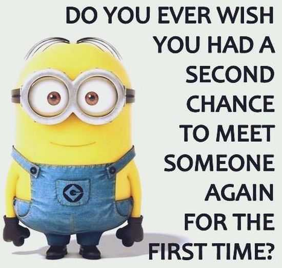 New Minion Pictures Of The Day 025