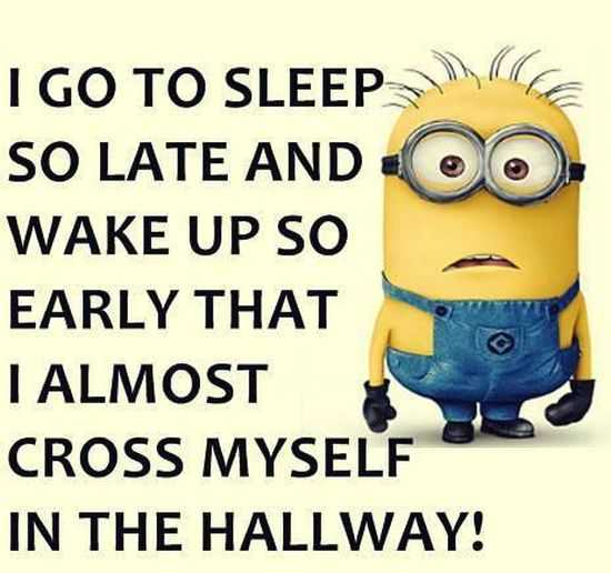 New Minion Pictures Of The Day 030