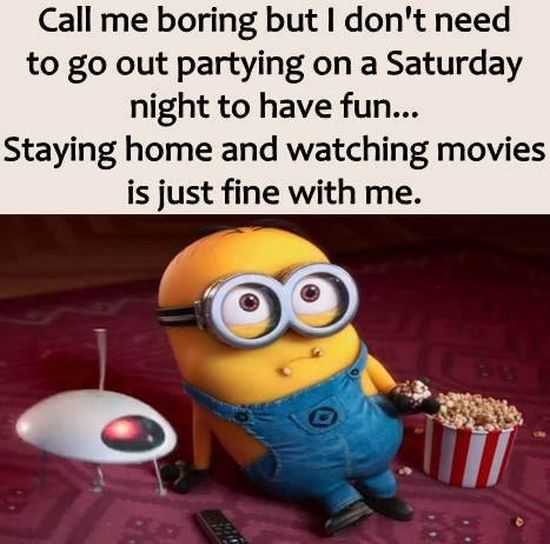 New Minion Pictures Of The Day 039