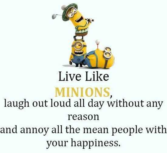 New Minion Pictures Of The Day 047