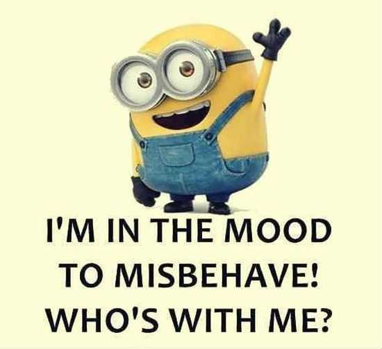 New Minion Pictures Of The Day 048