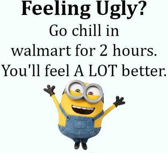 New Minion Pictures Of The Day 057