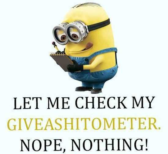Funny Minions Pictures And Funny Minions Quotes 043