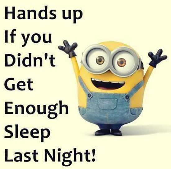 Funny Minions Pictures And Funny Minions Quotes 074