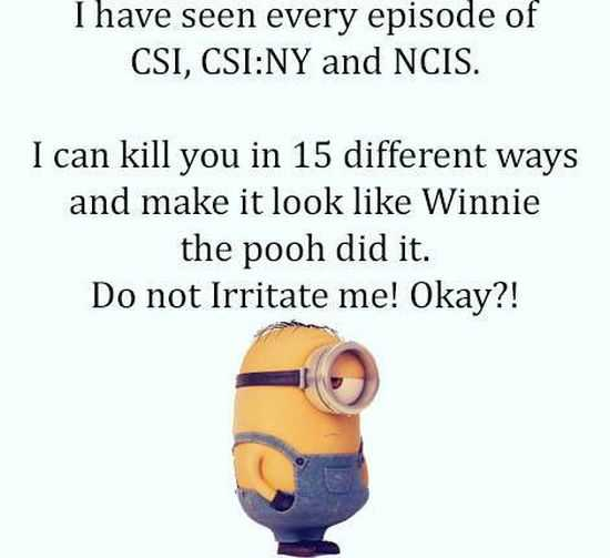 The Minions Quotes Funny 031