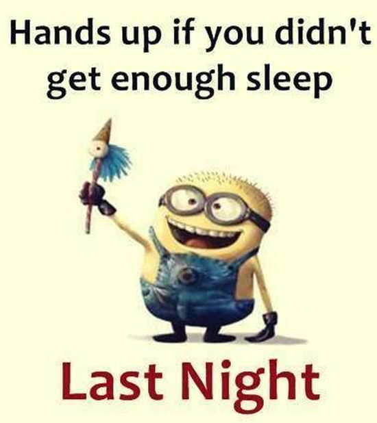 The Minions Quotes Funny 033