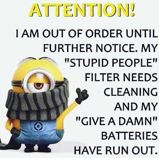 Funny Minions Quotes: New Minions Quotes Of The Week