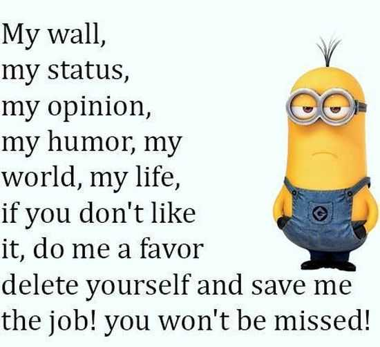 New Funny Minion Pictures And Quotes 017
